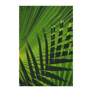 Palm Frond Print on Canvas Canvas Print