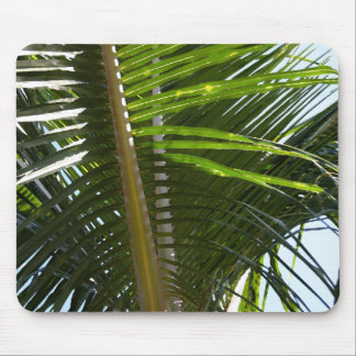 Palm Frond Too Mouse Pad