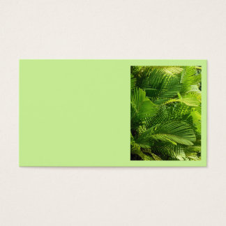 Palm Fronds Business Card