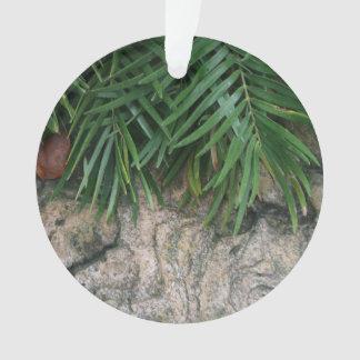 Palm fronds over rocks neat garden photo