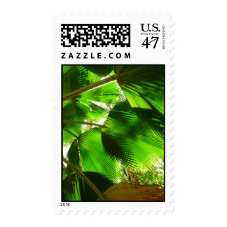 Palm Fronds Postage
