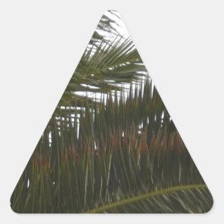 Palm Fronds Triangle Sticker