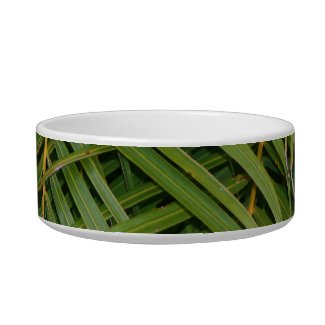 Palm Fronds with Palm Tree white text tropical petbowl