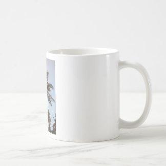 Palm Gets Mooned Coffee Mug