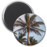 Palm Gets Mooned Refrigerator Magnets