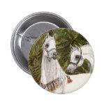 Palm Grove Arabian horse round button