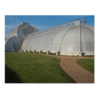 Palm House, Kew Gardens, London, England, U.K. Postcard