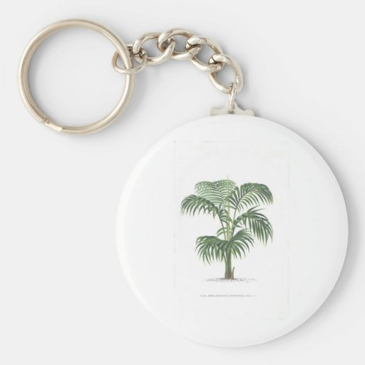 Palm illustration series - plate 8 keychains