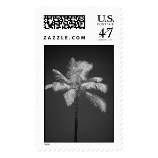Palm in Infrared Postage Stamp