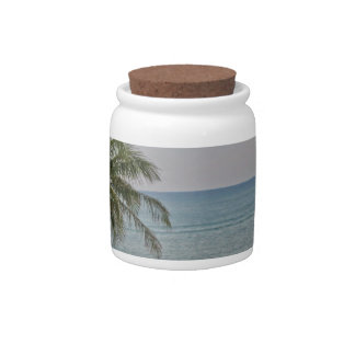 Palm in Paradise Candy Jars