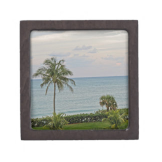 Palm in Paradise Gift Box