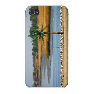 Palm Island Phone case