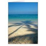 Palm, Lanikai Beach Greeting Card