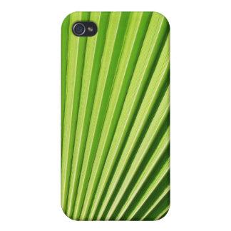 Palm leaf 4  iPhone 4 case