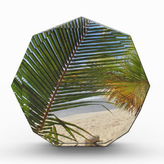 palm leaf awards