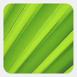 Palm leaf background square sticker