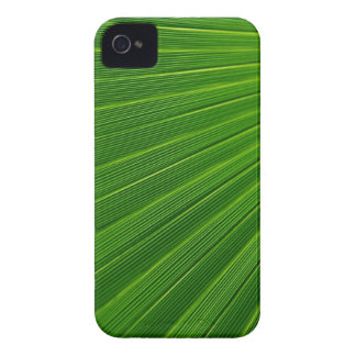 Palm Leaf iPhone 4 Case-Mate Case