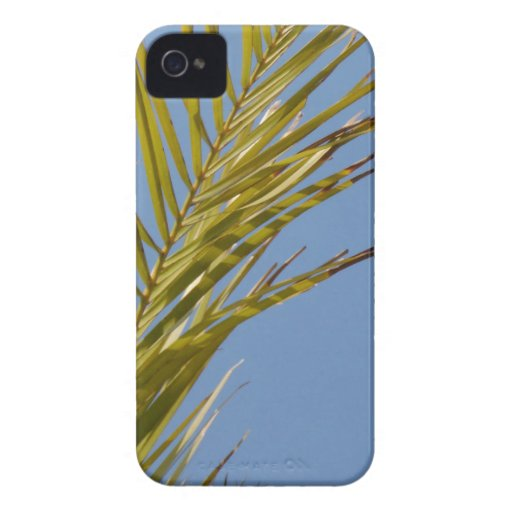 Palm Leaf iPhone 4 Covers