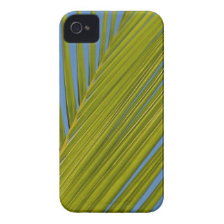Palm Leaf iPhone 4 Case-Mate Cases
