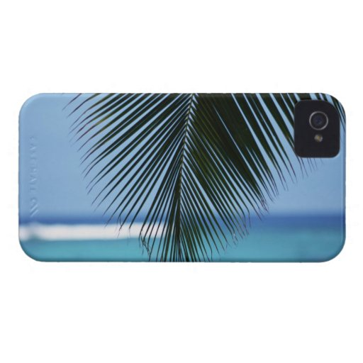 Palm leaf iPhone 4 case