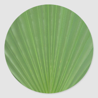 Palm leaf classic round sticker