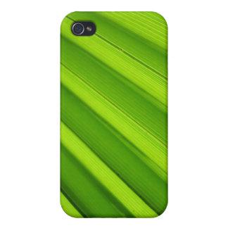 Palm Leaf Detail iPhone 4 Case