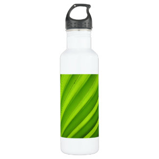 Palm Leaf Detail Stainless Steel Water Bottle