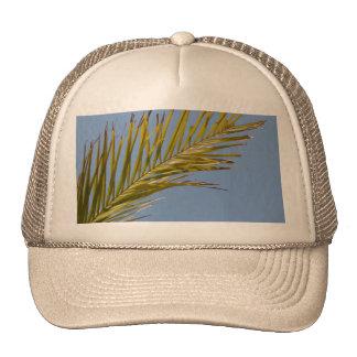 Palm Leaf Mesh Hats
