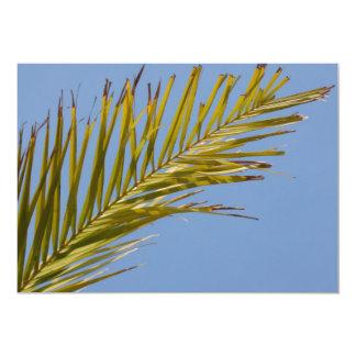 Palm Leaf Cards