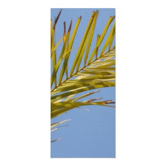 Palm Leaf Announcements