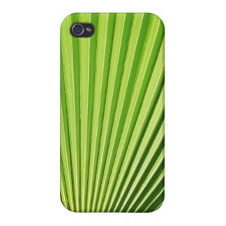 Palm leaf iPhone Case iPhone 4/4S Cases