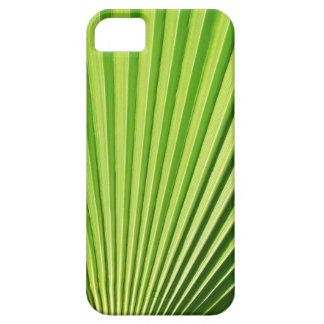 Palm leaf iPhone SE/5/5s case