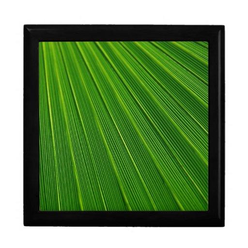 Palm Leaf Jewelry Box