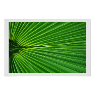 Palm Leaf natural abstract Poster