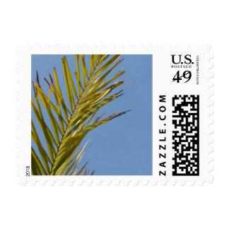 Palm Leaf Postage Stamps