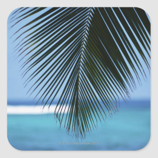Palm leaf square sticker