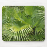 Palm Leaves Mouse Pad