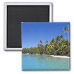 Palm lined beach Cook Islands 2 Fridge Magnets