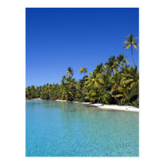 Palm lined beach Cook Islands 2 Post Card