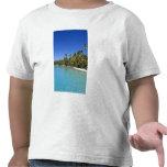 Palm lined beach Cook Islands 2 Tee Shirts