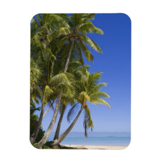 Palm lined beach Cook Islands 3 Magnet