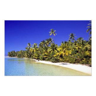 Palm lined beach Cook Islands 3 Photo Print