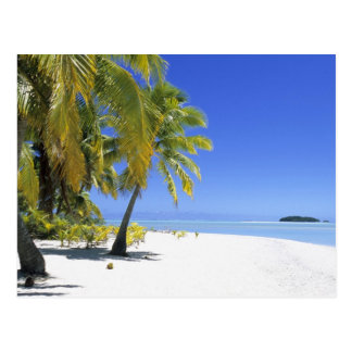 Palm lined beach Cook Islands 3 Post Card
