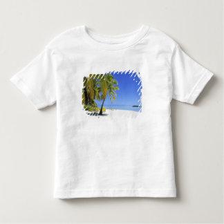Palm lined beach Cook Islands 3 Shirt