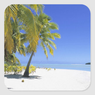 Palm lined beach Cook Islands 3 Square Sticker