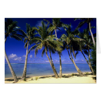 Palm lined beach Cook Islands 4 Card
