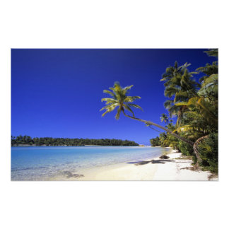 Palm lined beach Cook Islands 4 Photo Print
