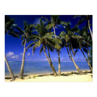 Palm lined beach Cook Islands 4 Postcard