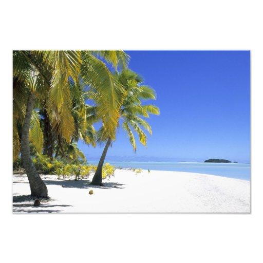 Palm lined beach Cook Islands 5 Photo Print