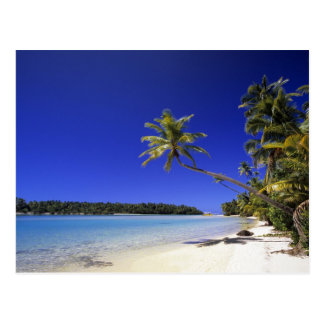 Palm lined beach Cook Islands 5 Post Card